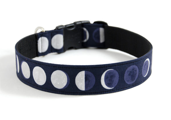 Buckle Dog Collar in Scout