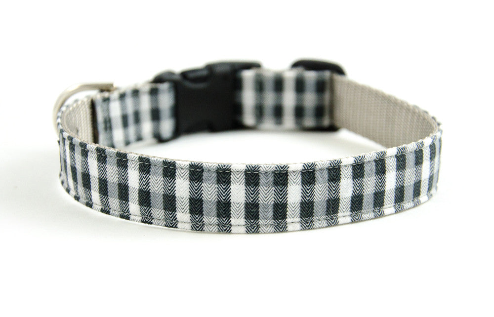 Buckle Dog Collar in Sully