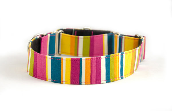 Martingale Collar in Whipple