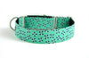 Martingale Collar in Winston