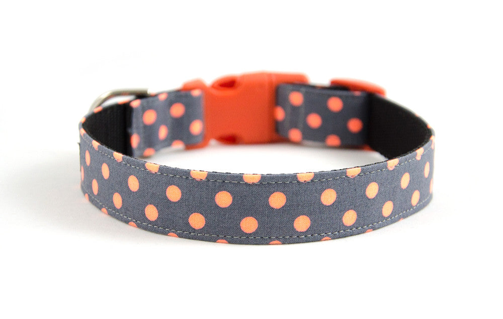 Buckle Dog Collar in Zoe (orange)