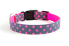 Buckle Dog Collar in Zoe (pink)