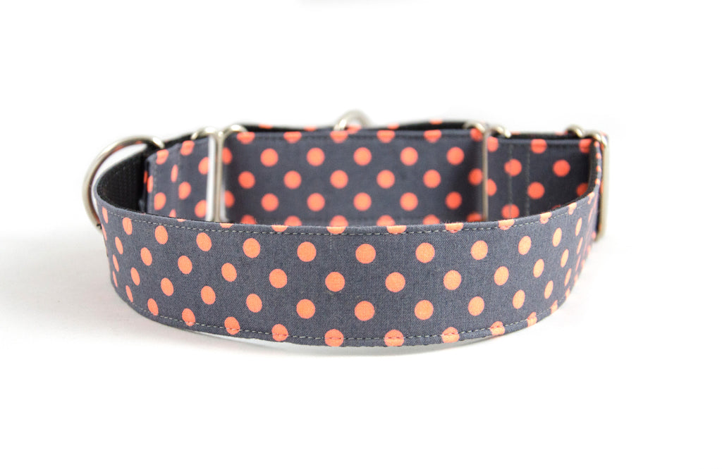 Martingale Collar in Zoe (orange)