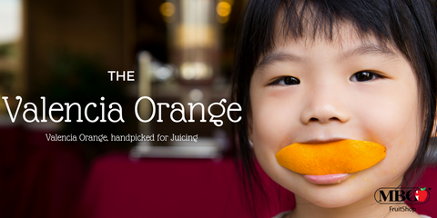 Valencia Orange, Handpicked for Juicing – MBG Fruit Shop