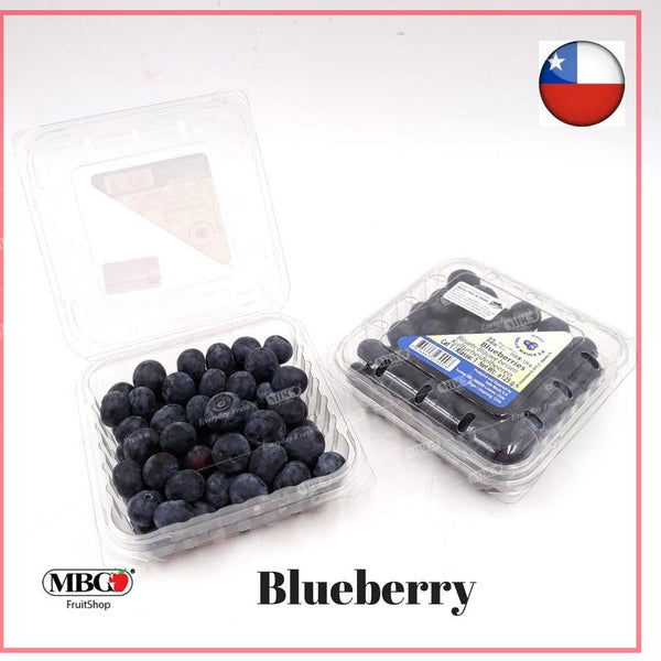 Chile Blueberry (125g/box)-Common Fruits-MBG Fruit Shop