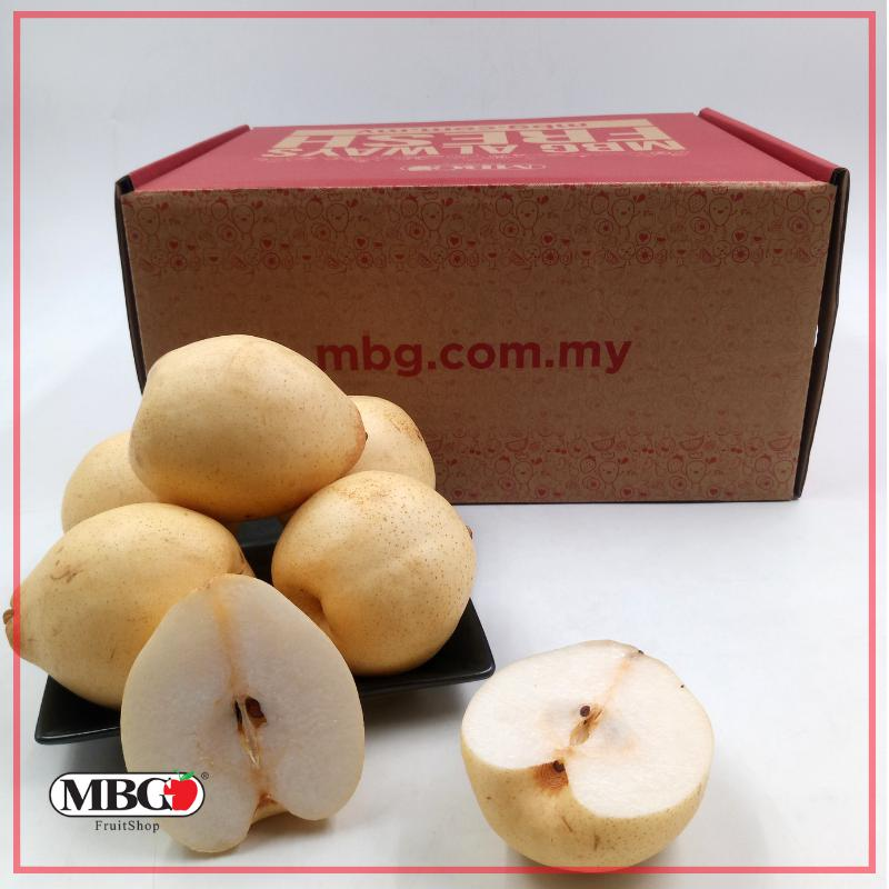 China Ya Pear Box (S)[24Pcs/Box]-Fruit Box-MBG Fruit Shop