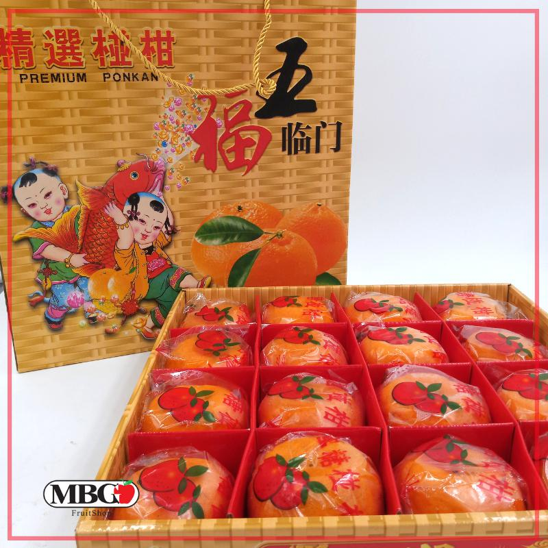 CNY19 Wu Fu Lin Men Mandarin XL Gift Box [16Pcs/Pack]-CNY Special-MBG Fruit Shop