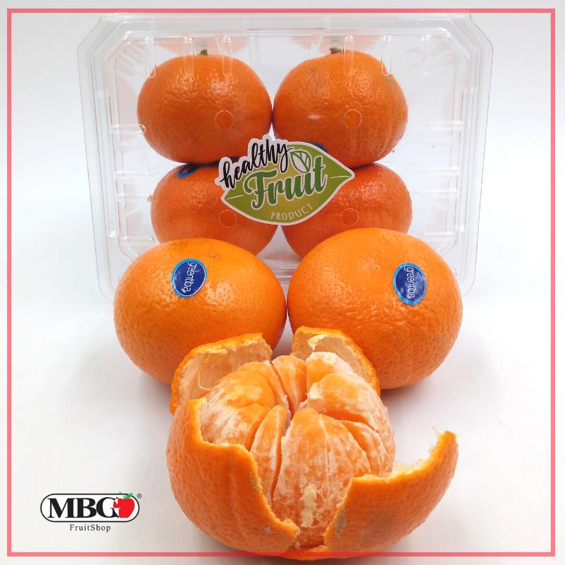 Egypt Murcott Tangerine [4Pcs/Pack]-Citrus-MBG Fruit Shop