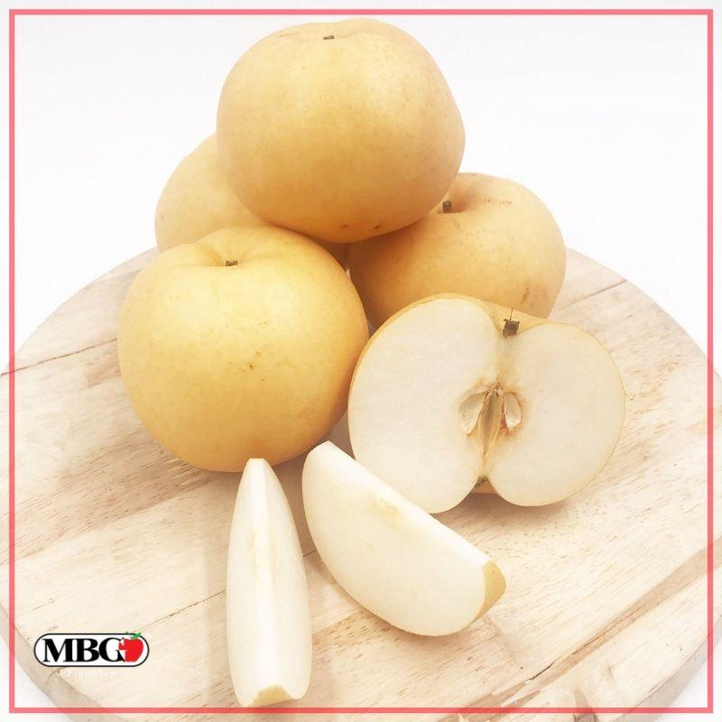 Korea Nashi Pear (M)-Apples Pears-MBG Fruit Shop