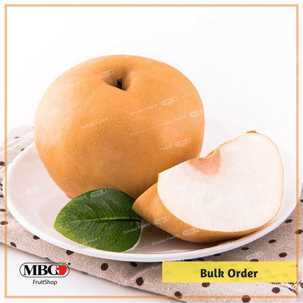 Singo Pear CN - 25pcs-Bulk Order-MBG Fruit Shop