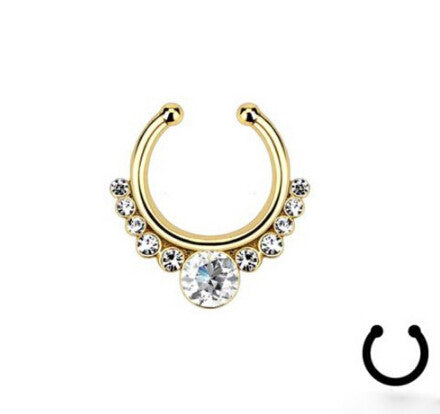 Steel Titanium Gold & Silver Plated Crystal Nose Ring