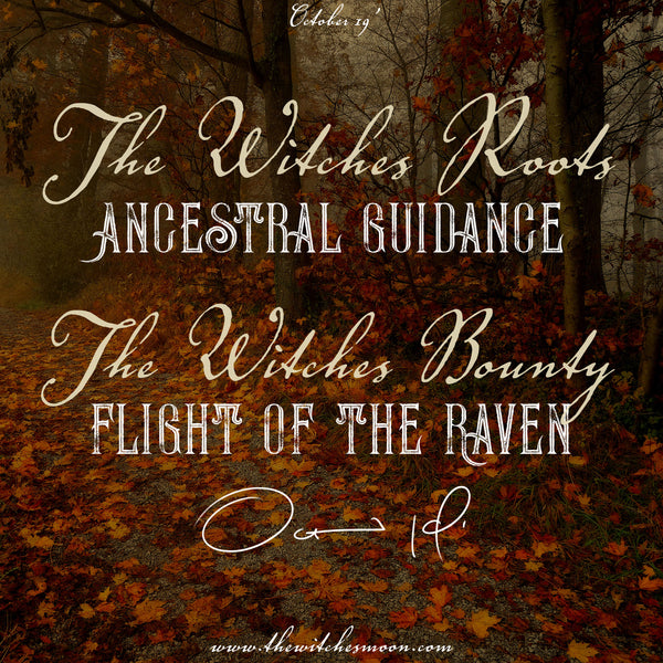 The Witches Bounty™ and The Witches Roots™ October 2019 Themes Revealed!