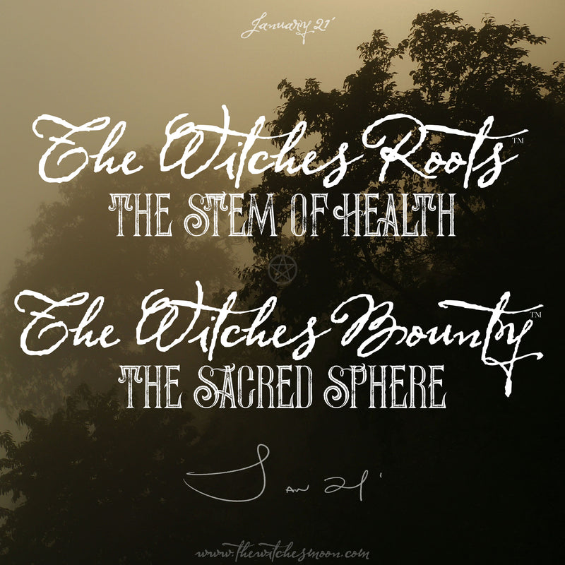 The Witches Roots™ & The Witches Bounty January 2021 Themes Revealed