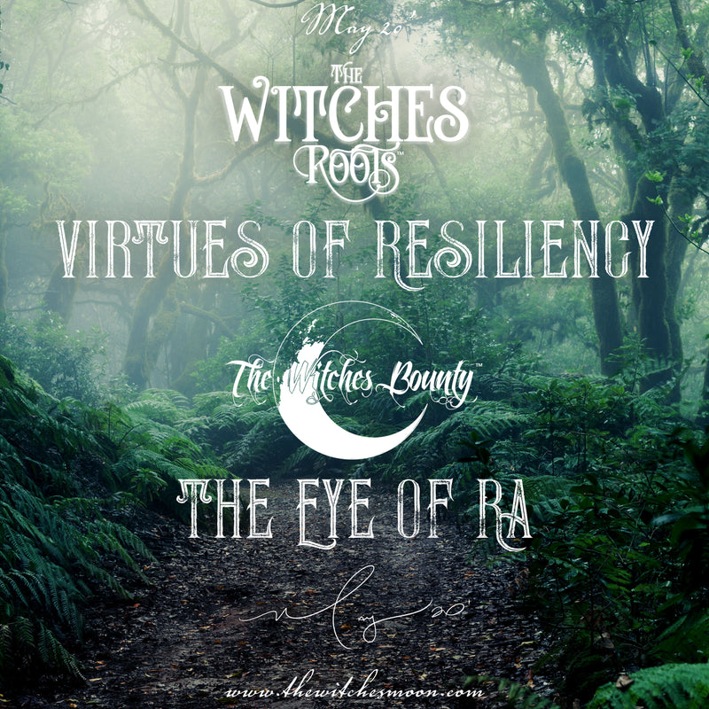 The Witches Roots™ & The Witches Bounty™ May 2020 Themes Revealed