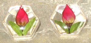 Real Rose Bud and Sterling Silver Earrings - Hexagon