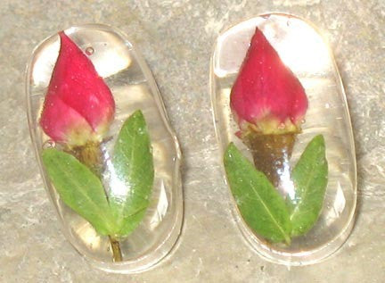 Real Rose Bud and Sterling Silver Earrings - Oblong