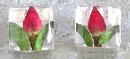 Real Rose Bud and Sterling Silver Earrings - Square