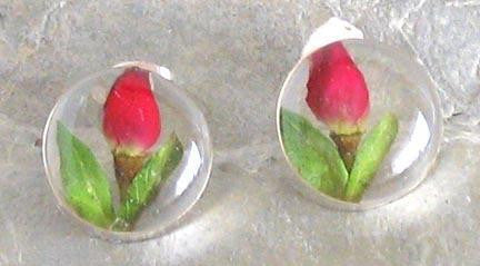 Real Rose Bud and Sterling Silver Earrings