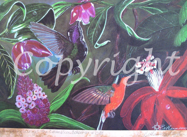 Whispering Wings Limited Edition Print