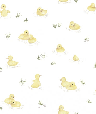 Ducklings Wallpaper