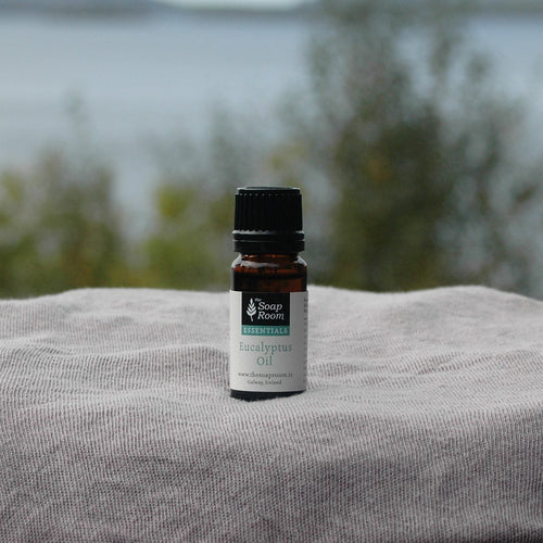 eucalyptus essential oil room spray room scented oil burner sinus cold chest infection