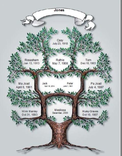 family tree, All in our families member of Mom Dad and Brother and Sister, Family Tree for your new family to let them who in family tree is design with your family you can do up to 11 person