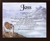 Joss, name meaning, name, meanings of name, baby name, personalized-unique-gifts.com
