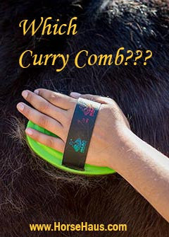 Know your Curry Comb!