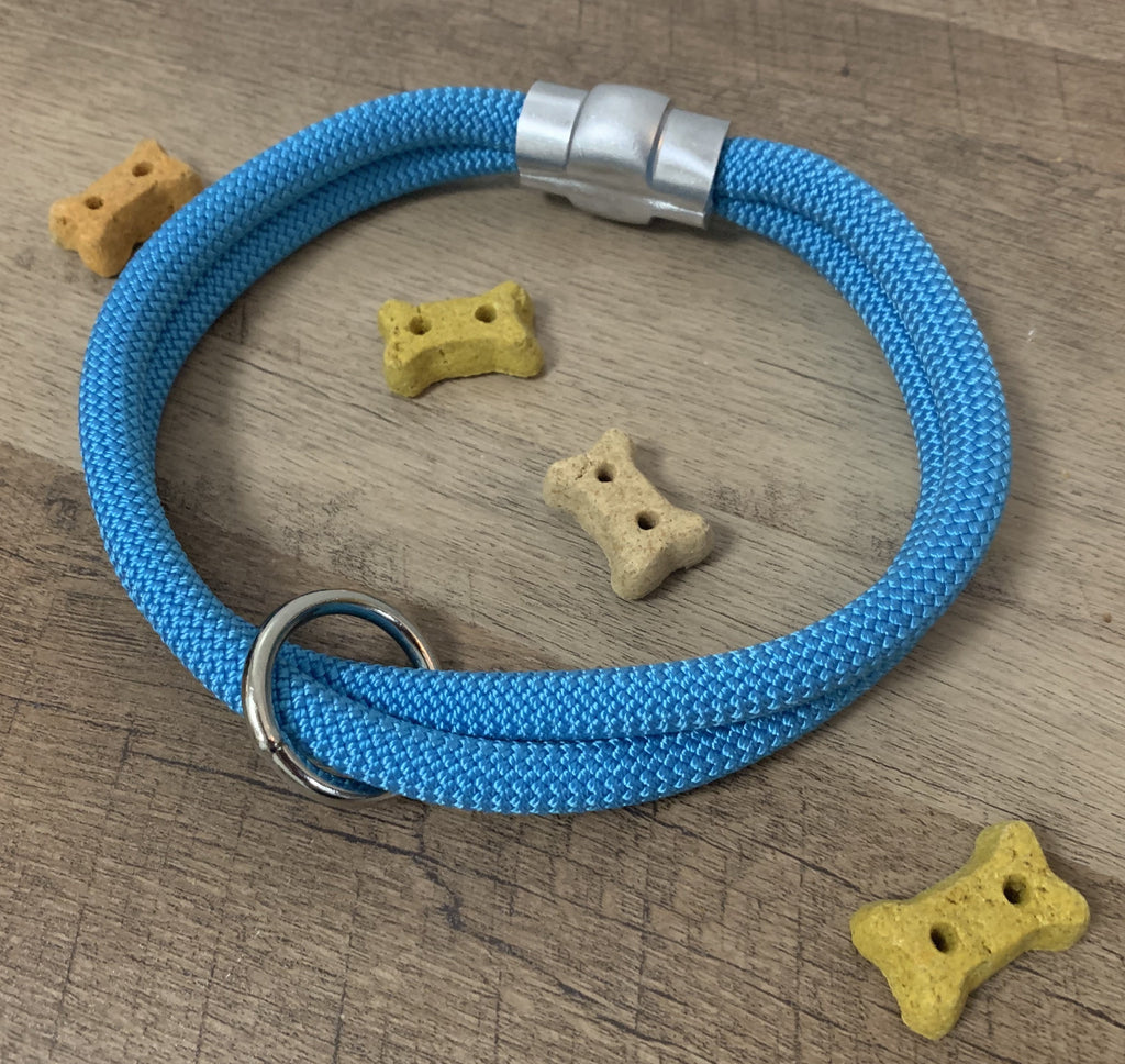 Caribbean Sea Blue - Just Pet Products