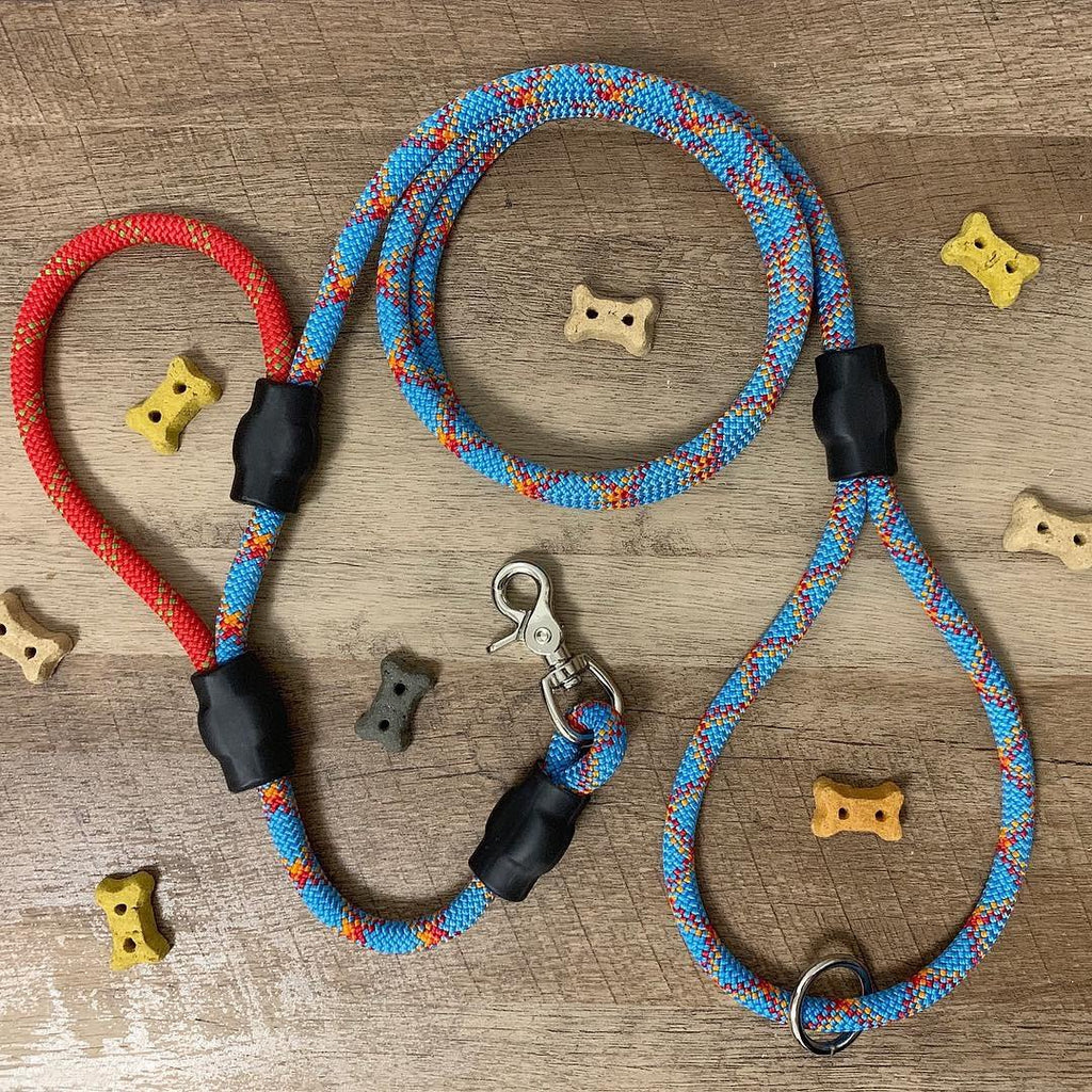 Leash + Secondary Traffic/Control Handle - Just Pet Products