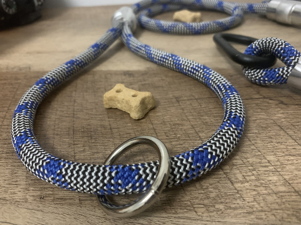 Blue & Silver Pattern - Just Pet Products