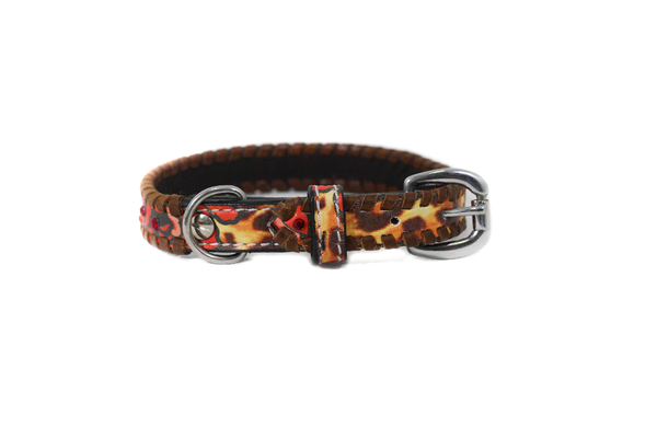 Stampede Shane Dog Collar 12""