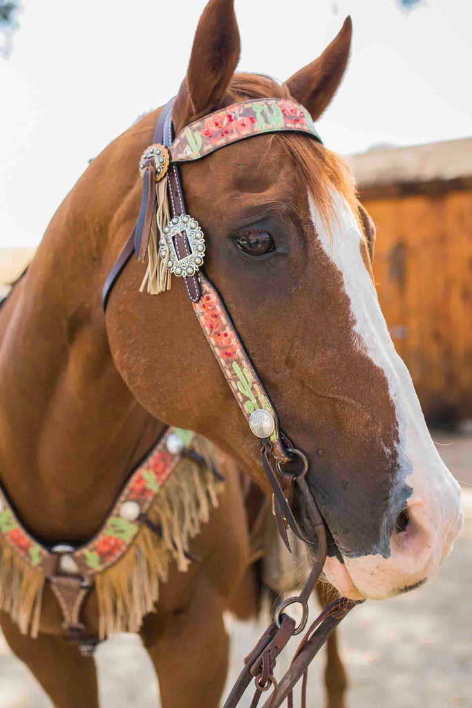 Cactus Rose Headstall Rodeo Quincy