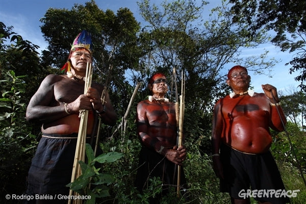 Greenpeace - Challenges Indigenous people in Brazil face to protect their Land