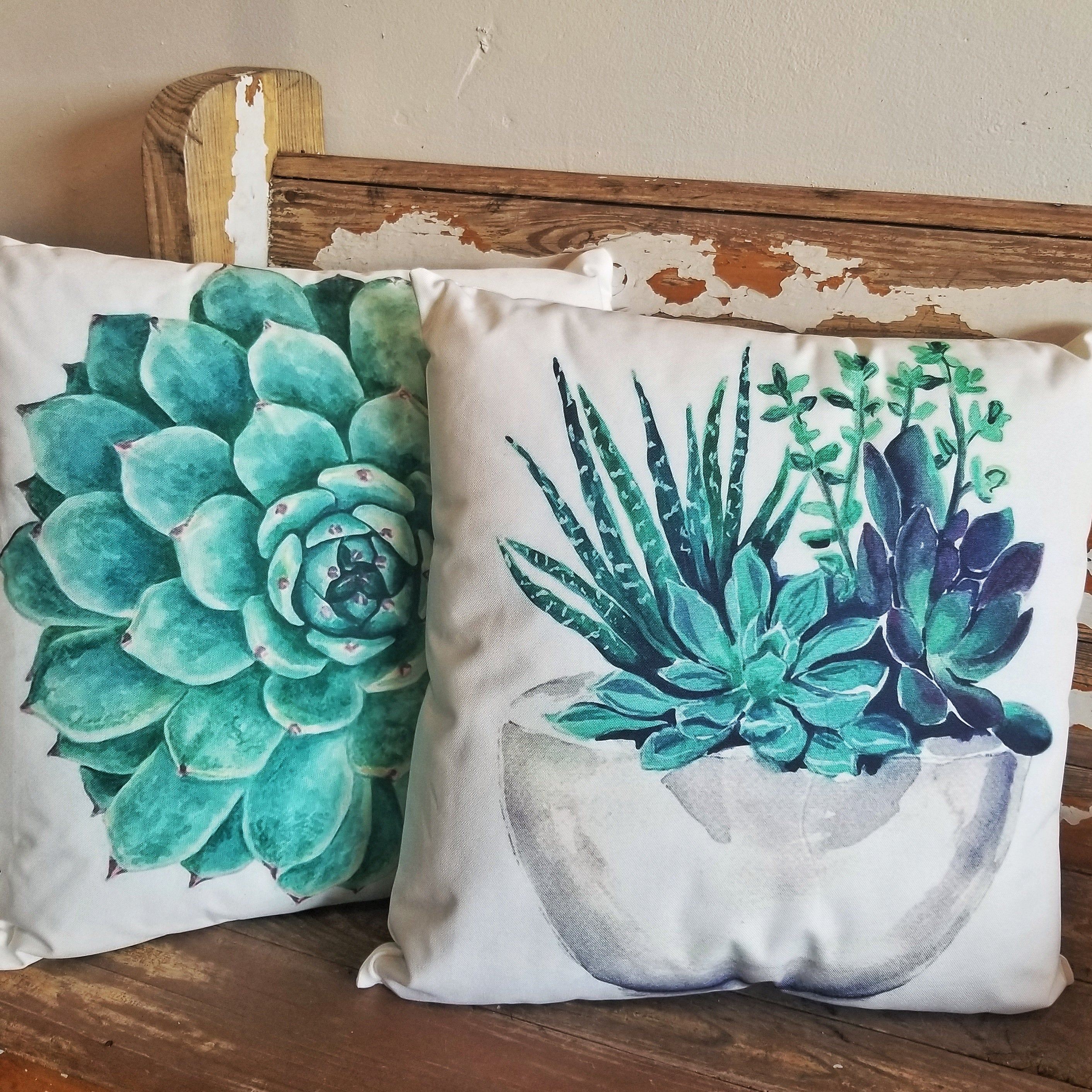 Potted Succulent Outdoor Pillow