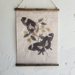 Butterfly Canvas - 3 Designs