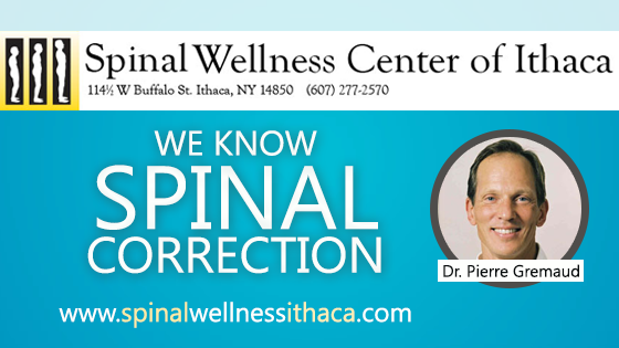 Spinal Wellness Center of Ithaca - Ithaca, NY