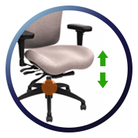 Lifeform Eclipse Deluxe Mid-Back 6694 Management Chair - Seat Height Adjustment