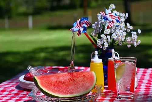 memorial day picnic festivities