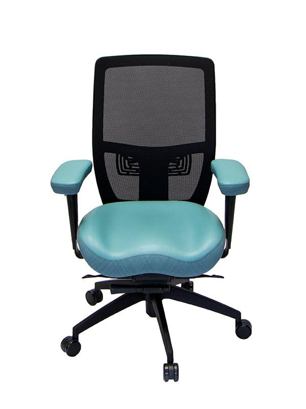 Lifeform Cosmopolitan - 320 Management Chair - Wish Rock Relaxation