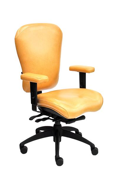 Management Chair - Lifeform Eclipse Deluxe High-Back 6794 Management Office Chair