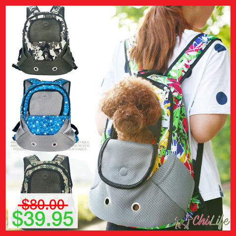 Back Pack Carrier For Small Dogs