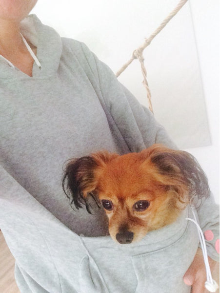 Doggaroo™ Pocket Hoodie For Small Dogs (and Cats Too!)