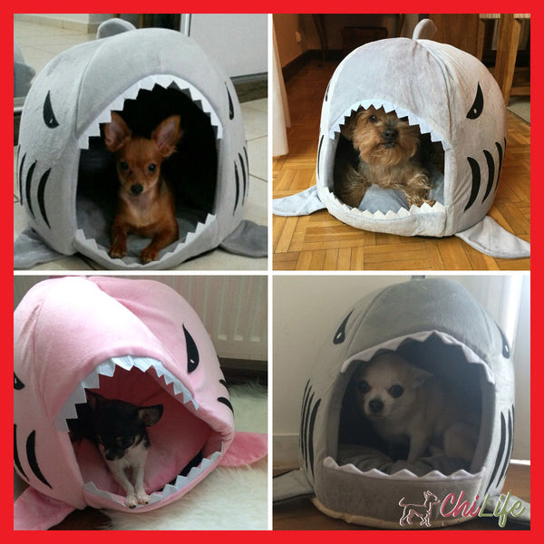 NEW - Shark Bed for Small Dogs