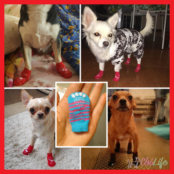 Warm Knit Socks for Dogs with Anti-Slip Bottoms - 4 pc set- NEW