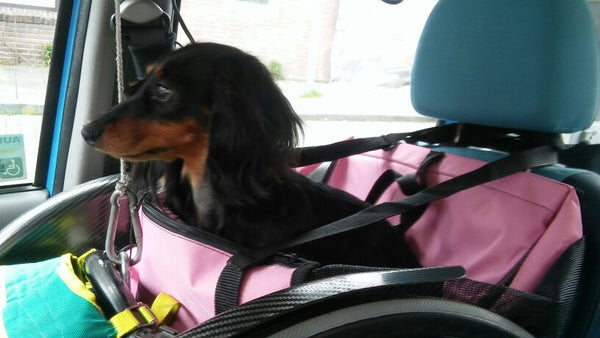 Small Dog Car Seat - NEW