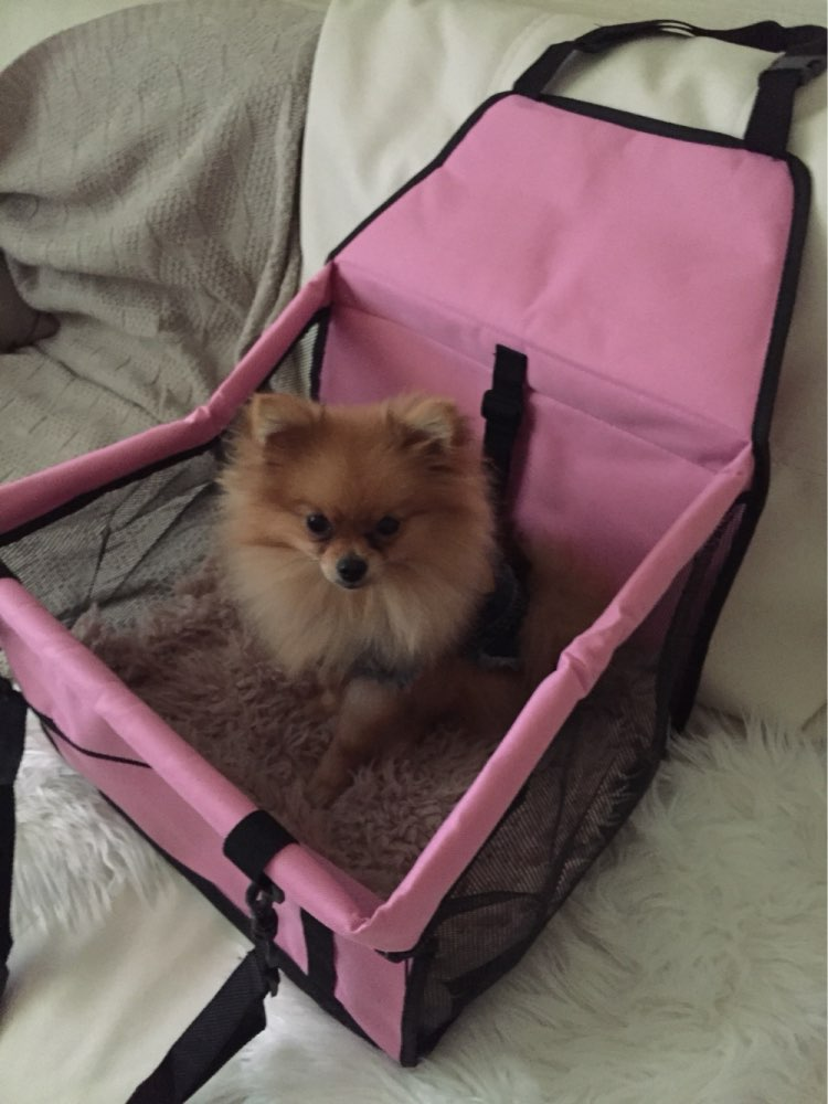 Small Dog Car Seat New Chilife
