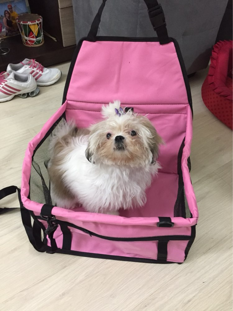 Small Dog Car Seat - NEW - ChiLife