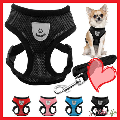 Breathable Mesh Small Dog Summer Harness (Free Leash!)
