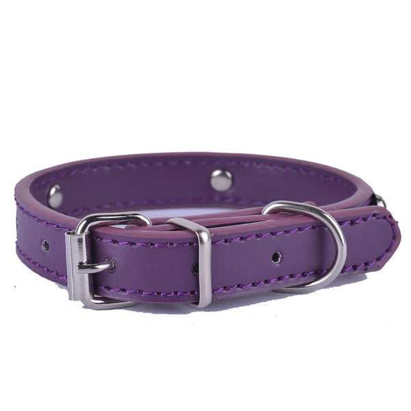 Sleek Leather Dog Collar for Small Dogs - NEW!